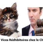 vices_rdhibitoires_chez_le_chat