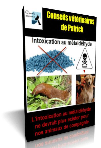 intoxication-métaldéhyde