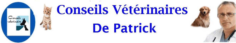 Conseils veterinaires de Patrick