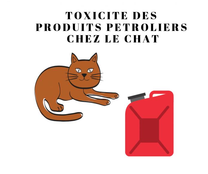 TOXICITE-PRODUITS-PETROLIERS-CHAT