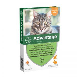 advantage-chat-moins-4kg