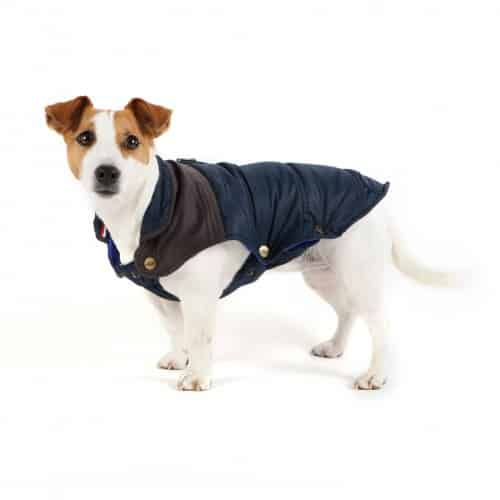 manteau-pour-chien-himalaya-navy