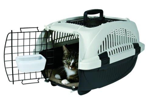 Résultats de recherche d'images pour «transporteur chat»
