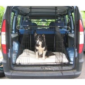 comment traiter le mal de transport du chien ou du chat conseils v t rinaires de patrick. Black Bedroom Furniture Sets. Home Design Ideas