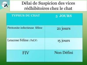 tableau_délai_suspicion_vices_rédhibitoires_chez_le_chat