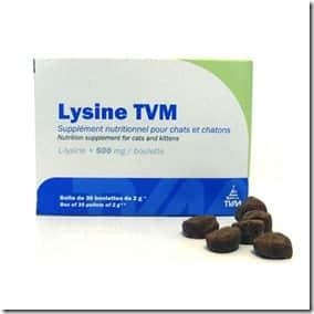 lysine (1)