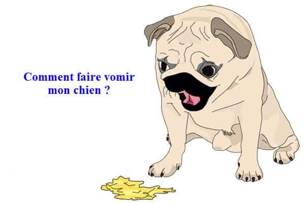 faire-vomir-mon-chien